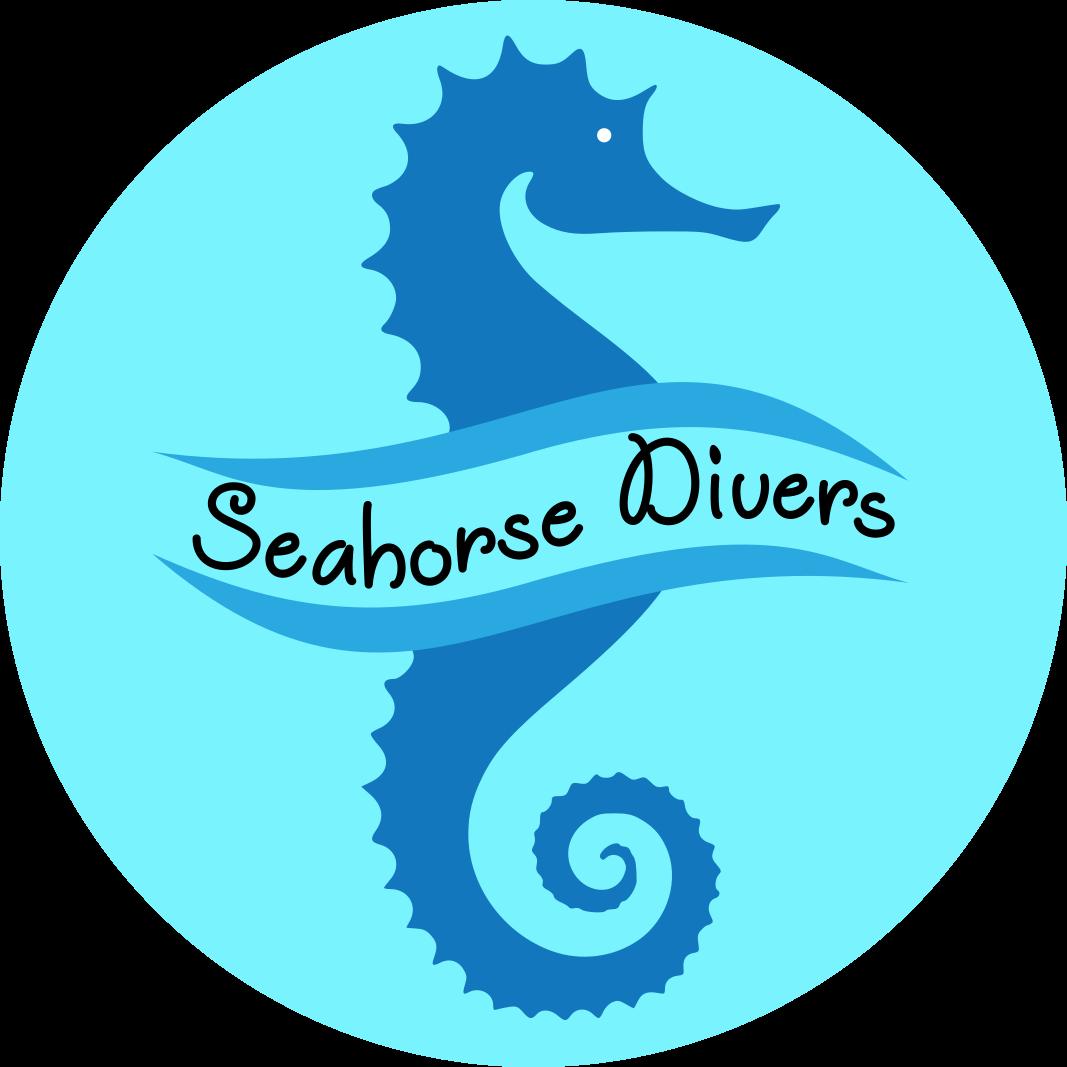 Seahorse Diving Unawatuna Sri Lanka